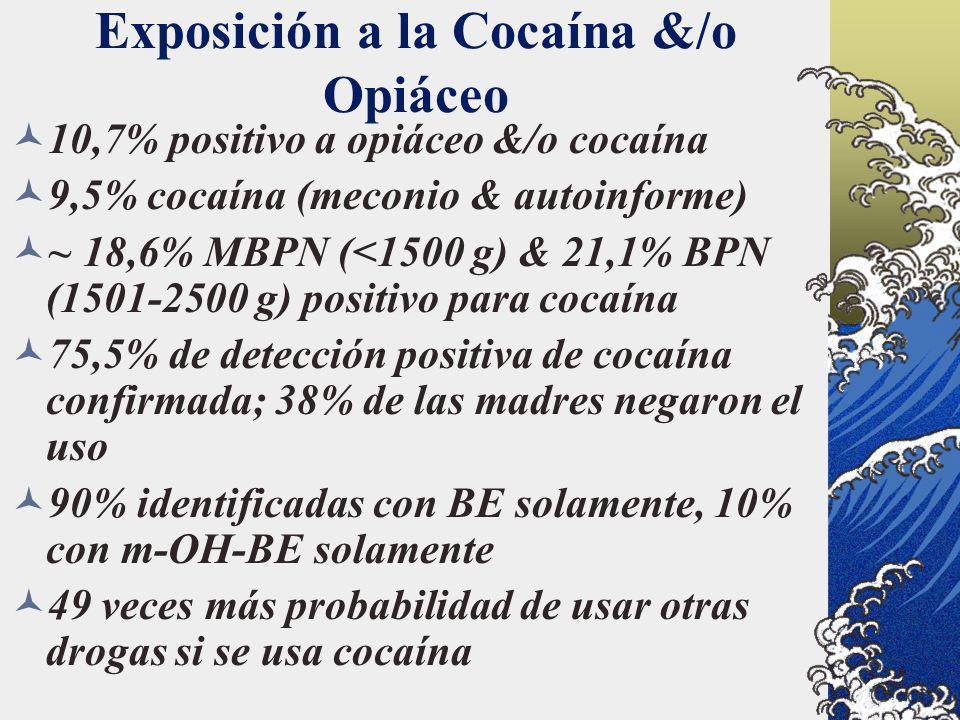 Exposición a la Cocaína &/o Opiáceo