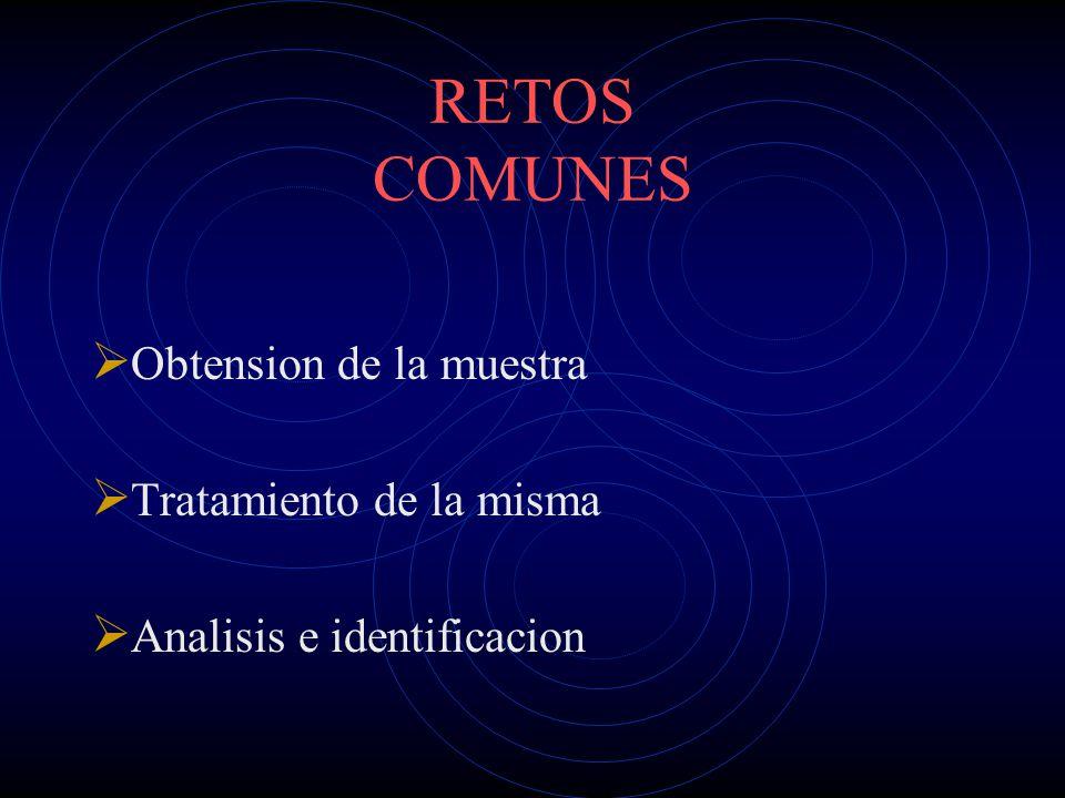 RETOS COMUNES Obtension de la muestra Tratamiento de la misma