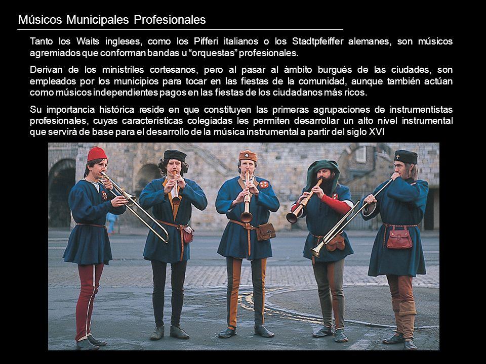 Músicos Municipales Profesionales