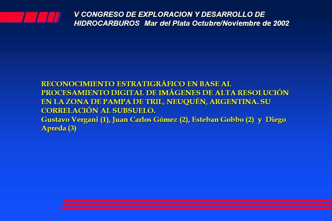 V CONGRESO DE EXPLORACION Y DESARROLLO DE HIDROCARBUROS Mar del Plata Octubre/Noviembre de 2002