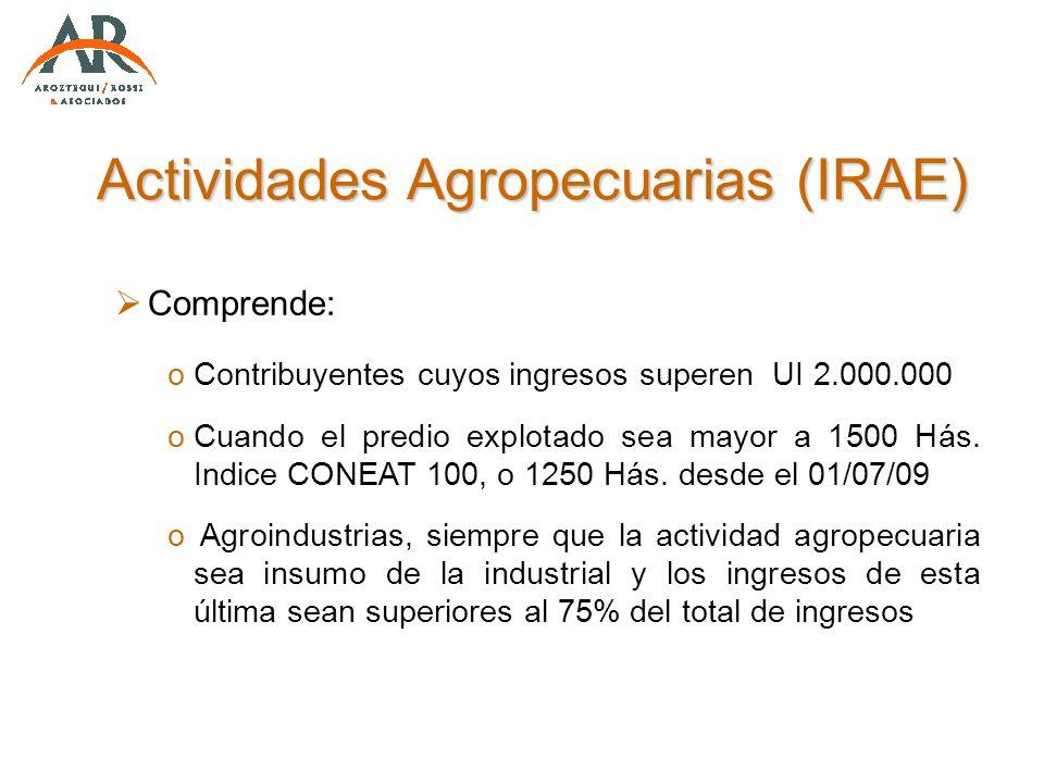 Actividades Agropecuarias (IRAE)