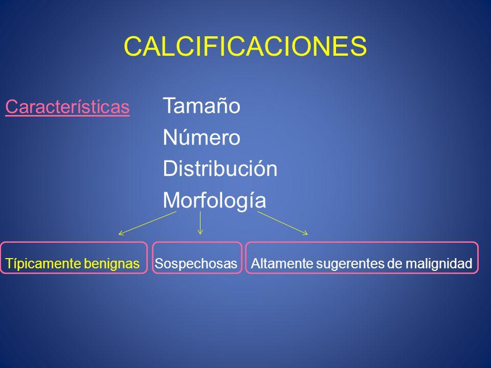 CALCIFICACIONES Número Distribución Morfología Características Tamaño