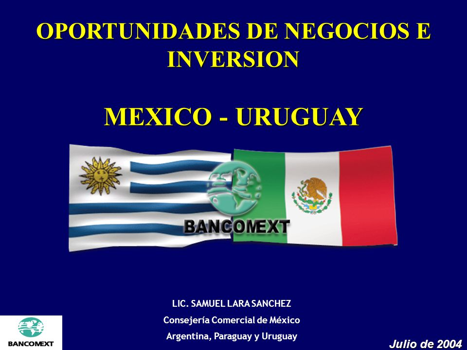 MEXICO - URUGUAY OPORTUNIDADES DE NEGOCIOS E INVERSION Julio de 2004