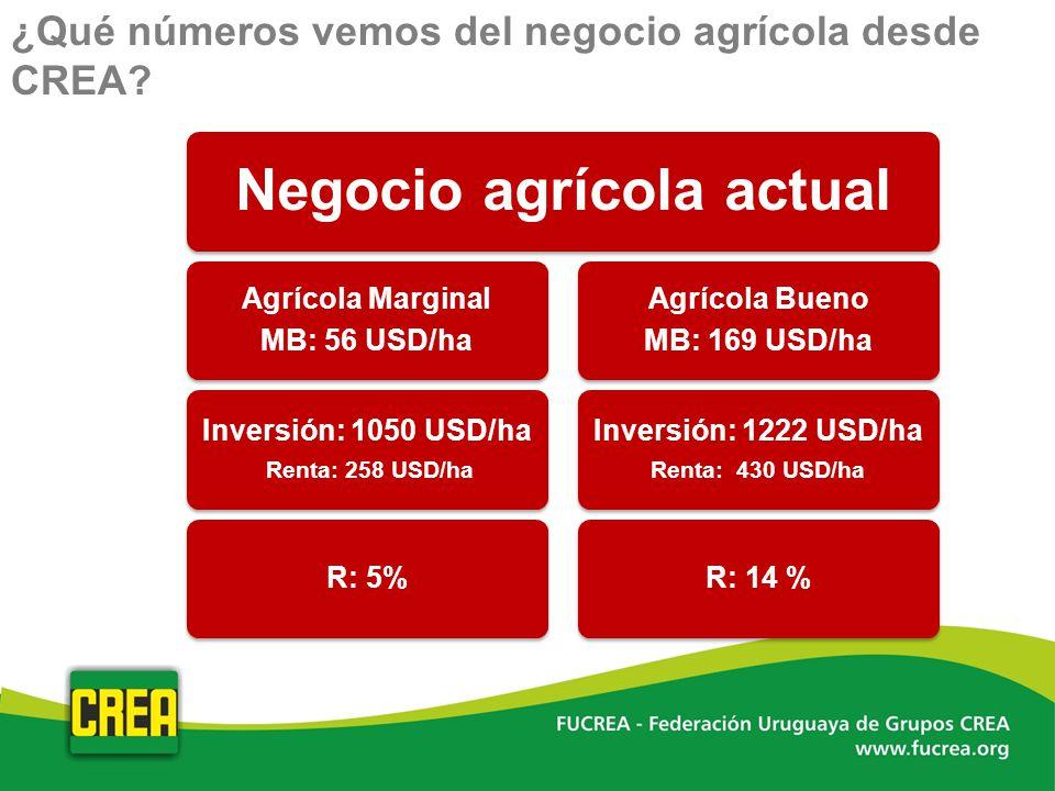 Negocio agrícola actual