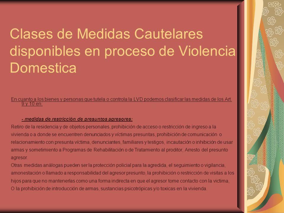 Clases de Medidas Cautelares disponibles en proceso de Violencia Domestica