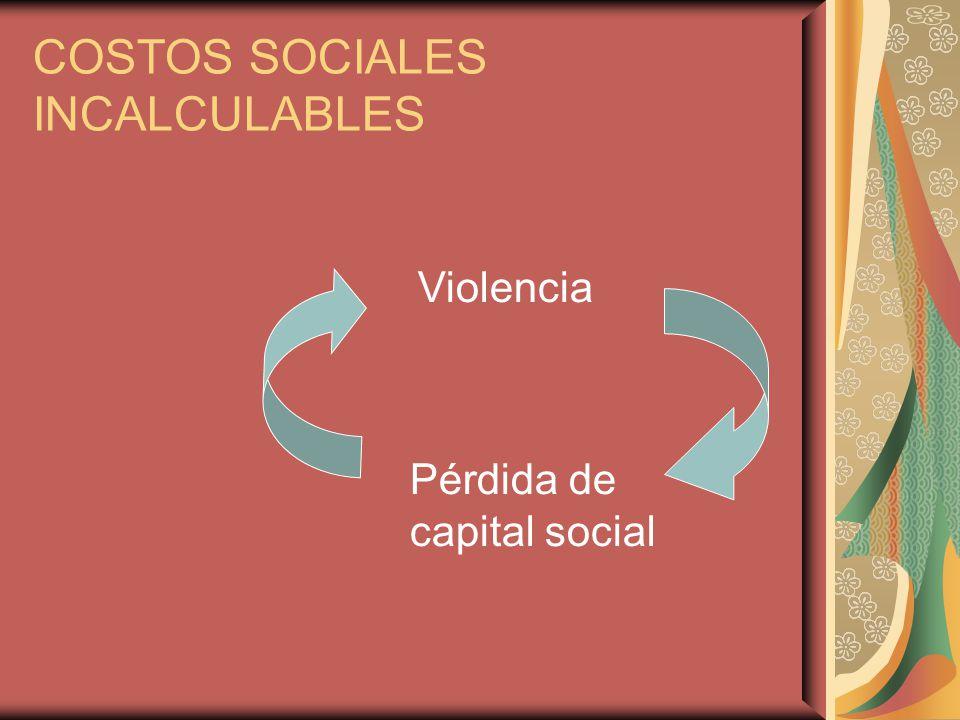 COSTOS SOCIALES INCALCULABLES