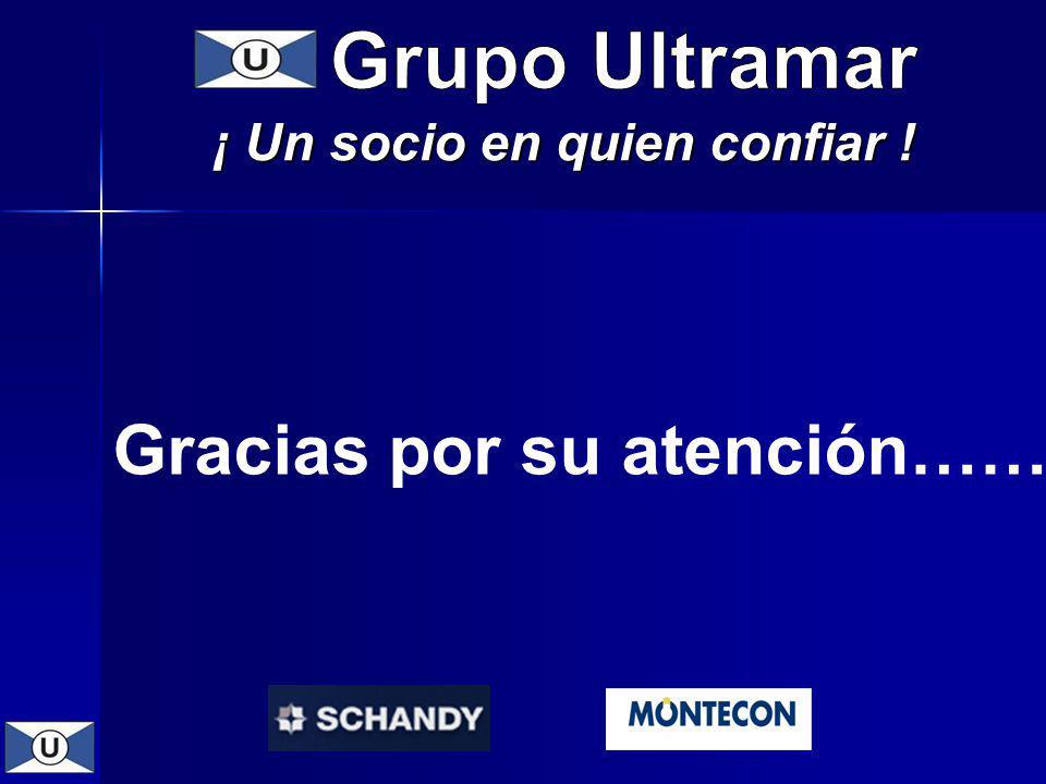 Grupo Ultramar ¡ Un socio en quien confiar ! Gracias por su atención……