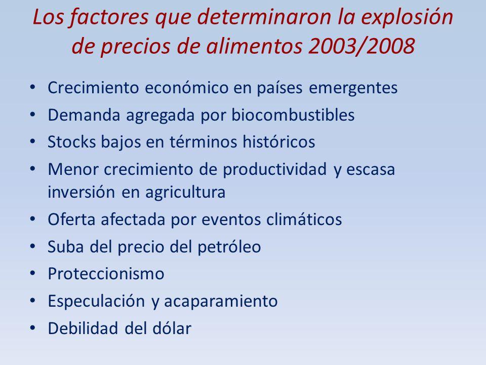 Los factores que determinaron la explosión de precios de alimentos 2003/2008