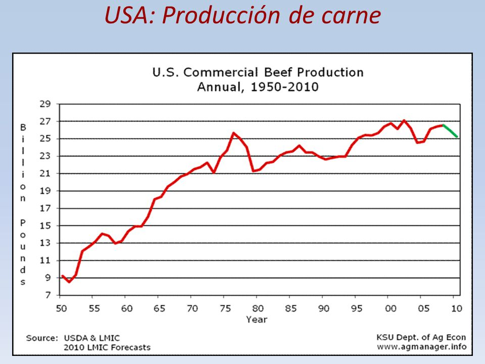 USA: Producción de carne
