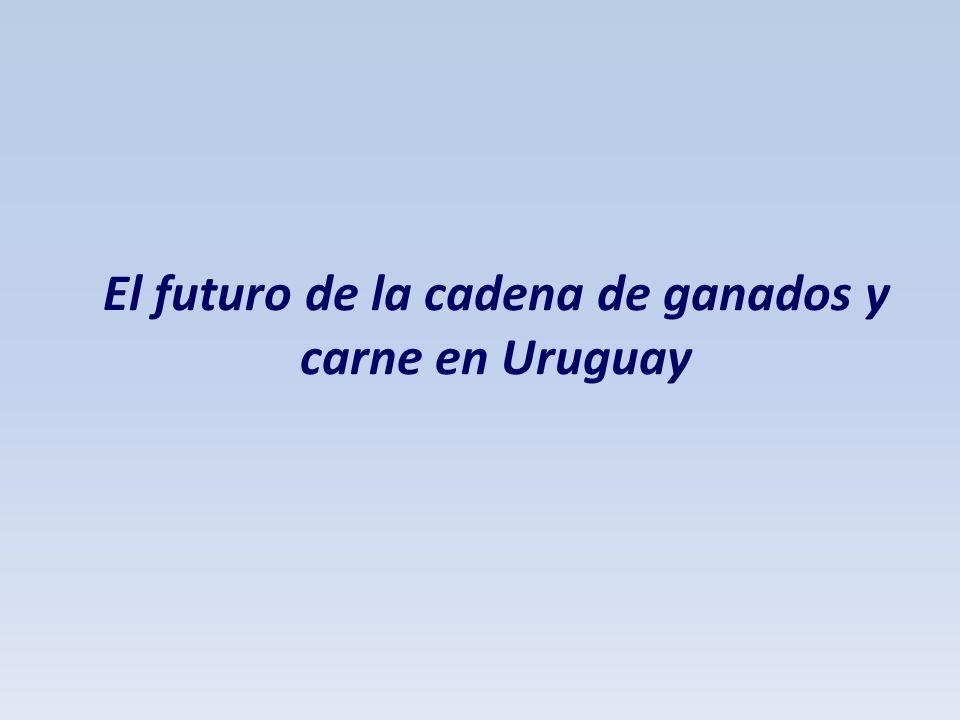 El futuro de la cadena de ganados y carne en Uruguay