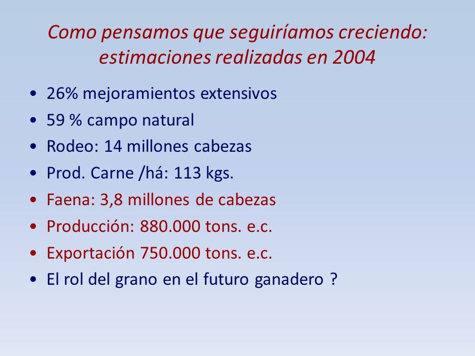 Como pensamos que seguiríamos creciendo: estimaciones realizadas en 2004