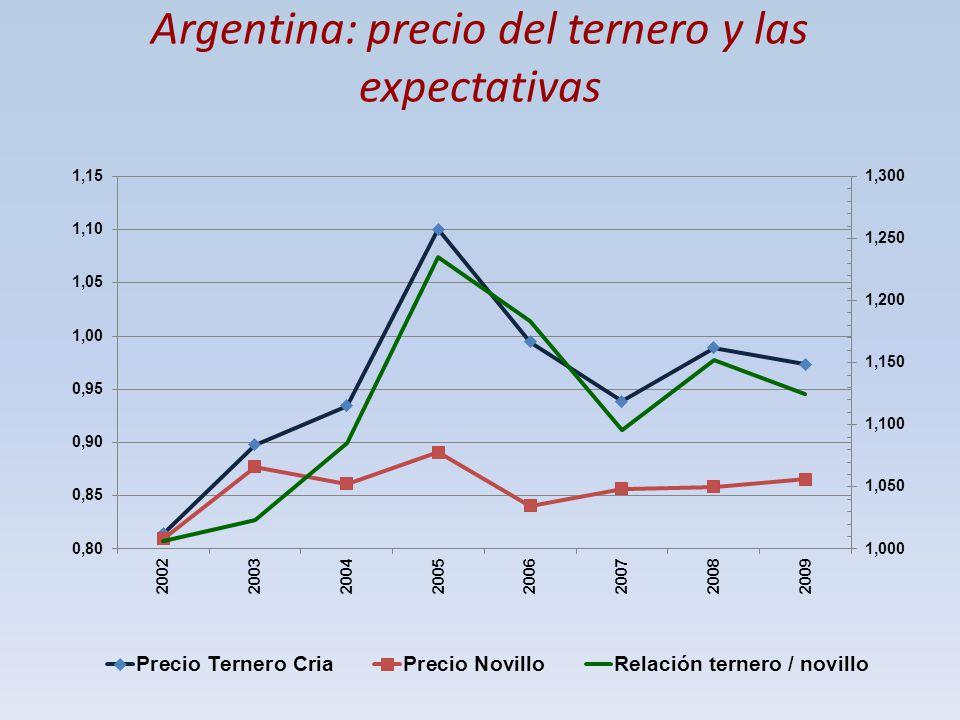 Argentina: precio del ternero y las expectativas