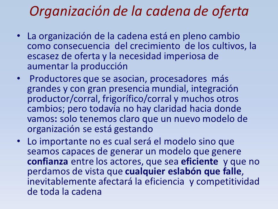 Organización de la cadena de oferta