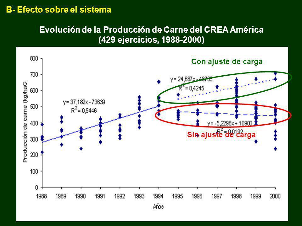 Evolución de la Producción de Carne del CREA América