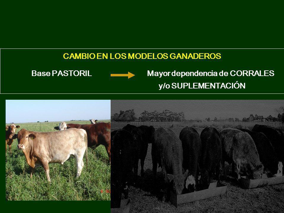 CAMBIO EN LOS MODELOS GANADEROS