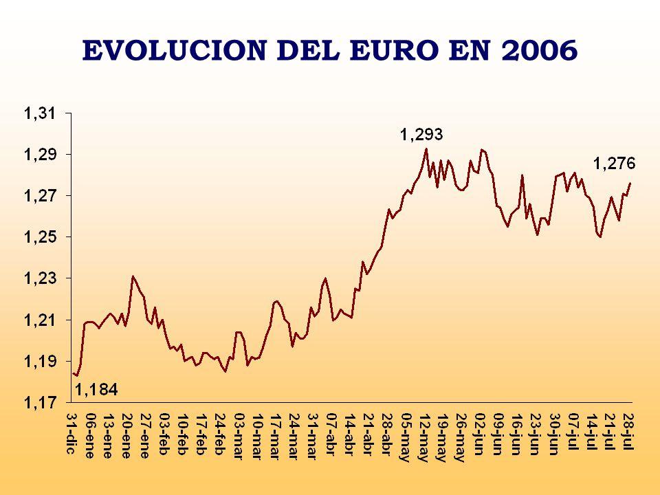EVOLUCION DEL EURO EN 2006