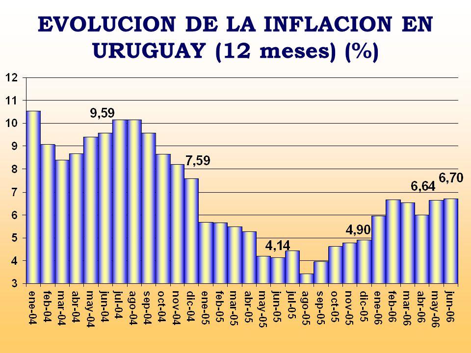 EVOLUCION DE LA INFLACION EN URUGUAY (12 meses) (%)