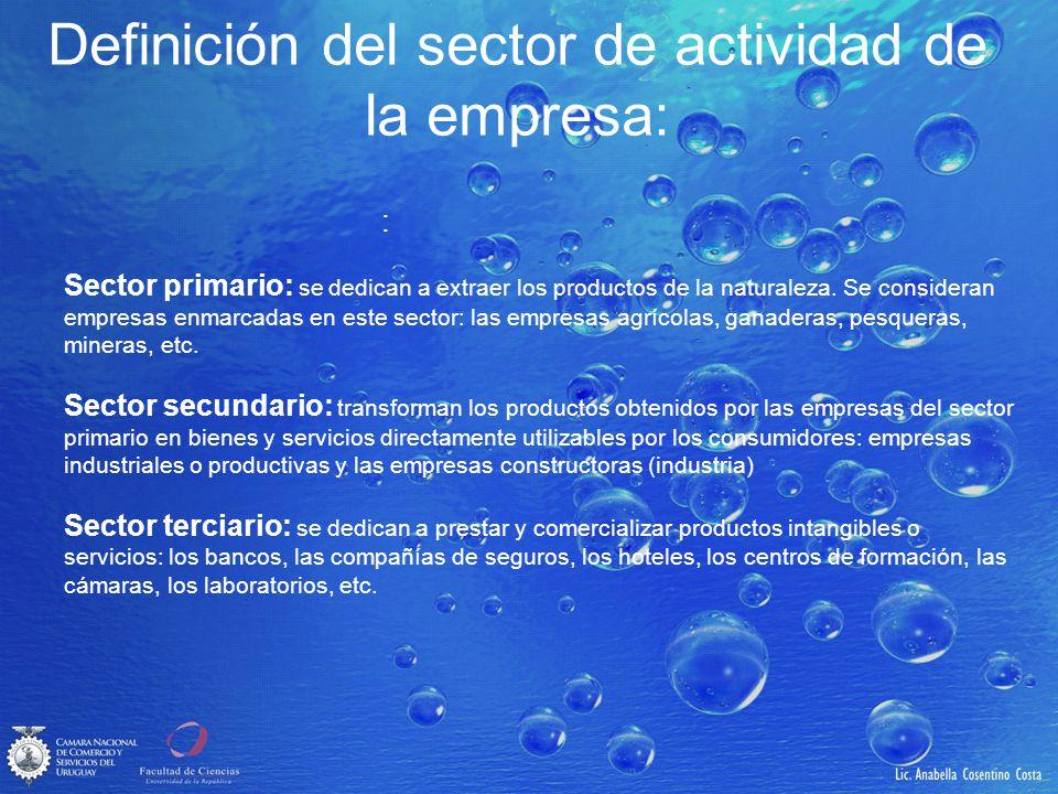 Definición del sector de actividad de la empresa: