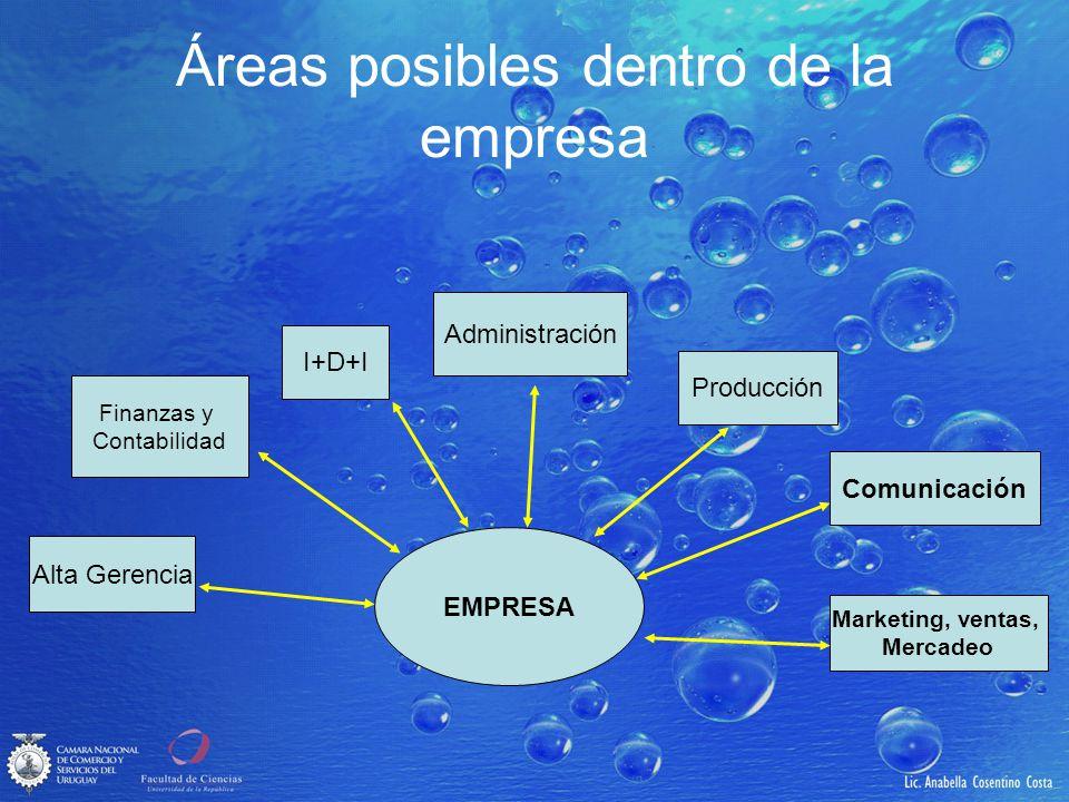 Áreas posibles dentro de la empresa