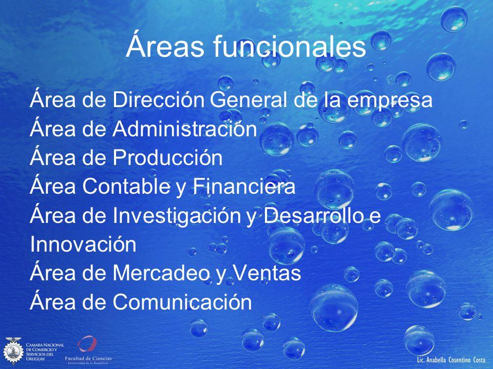 Áreas funcionales Área de Dirección General de la empresa
