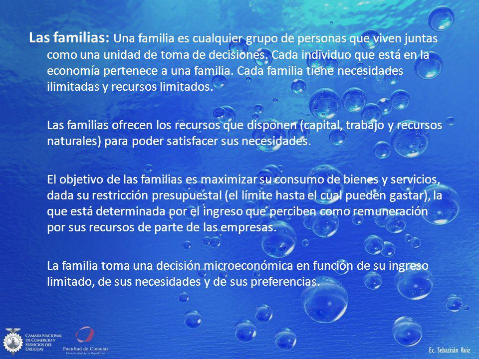 Las familias: Una familia es cualquier grupo de personas que viven juntas como una unidad de toma de decisiones. Cada individuo que está en la economía pertenece a una familia. Cada familia tiene necesidades ilimitadas y recursos limitados.