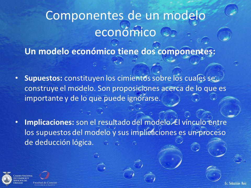 Componentes de un modelo económico
