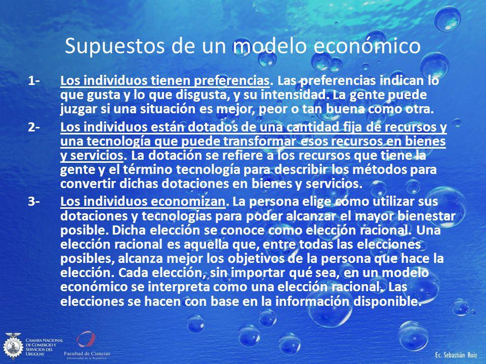 Supuestos de un modelo económico