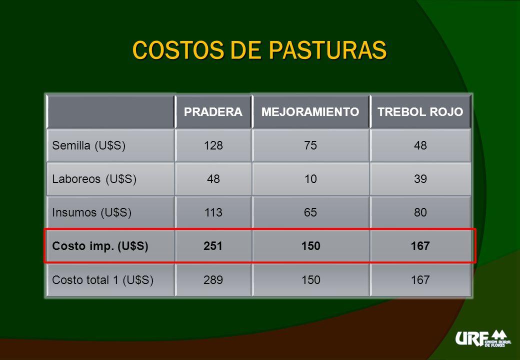 COSTOS DE PASTURAS PRADERA MEJORAMIENTO TREBOL ROJO Semilla (U$S) 128