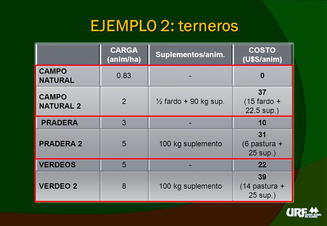 EJEMPLO 2: terneros CARGA (anim/ha) Suplementos/anim. COSTO (U$S/anim)