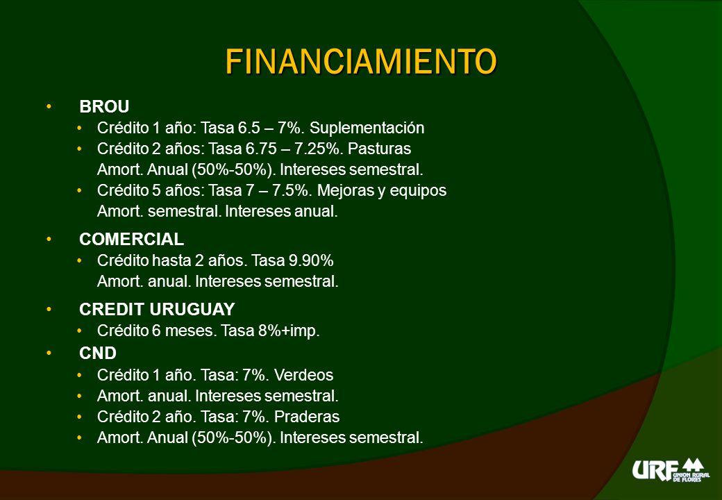 FINANCIAMIENTO BROU COMERCIAL CREDIT URUGUAY CND