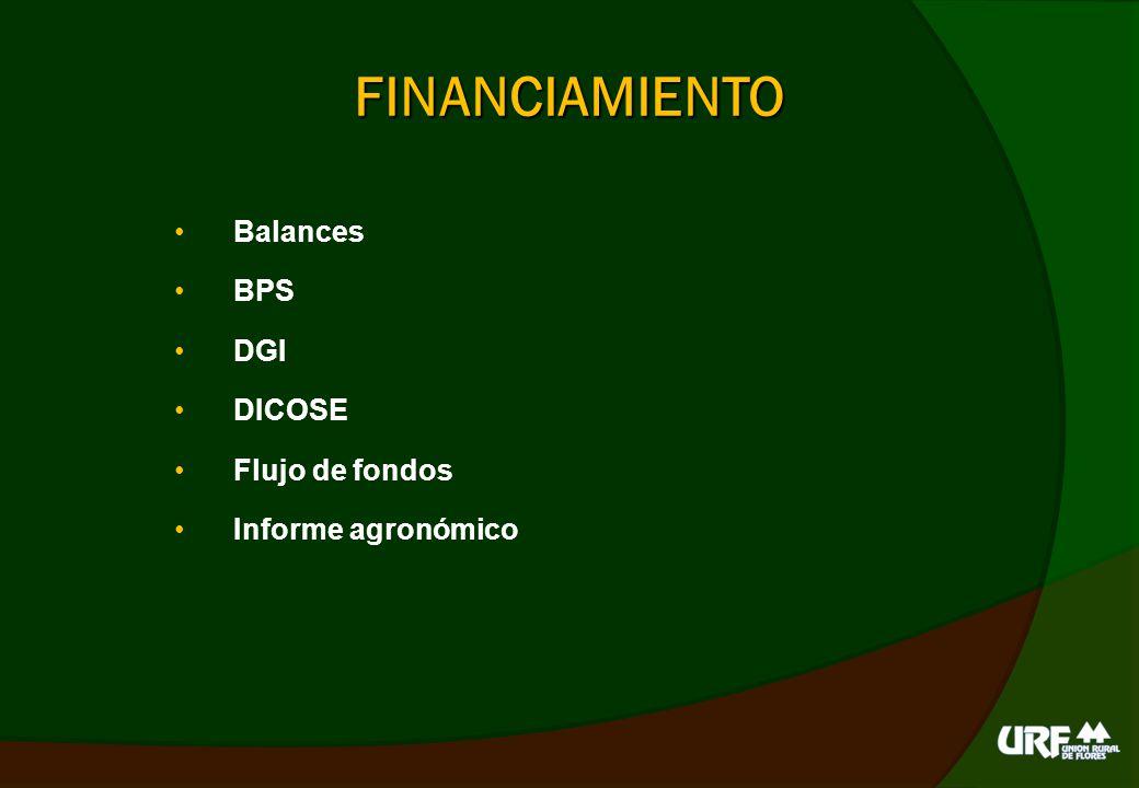 FINANCIAMIENTO Balances BPS DGI DICOSE Flujo de fondos
