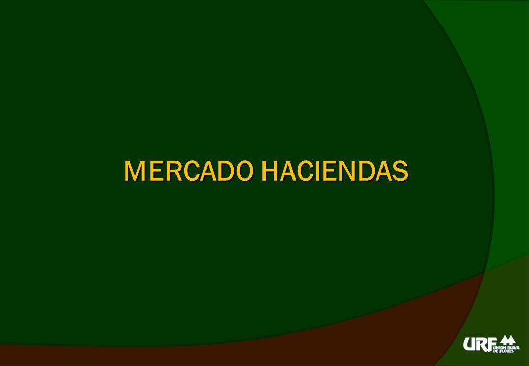 MERCADO HACIENDAS