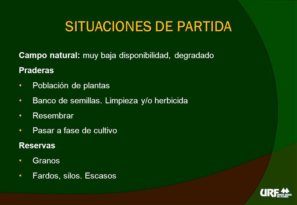 SITUACIONES DE PARTIDA