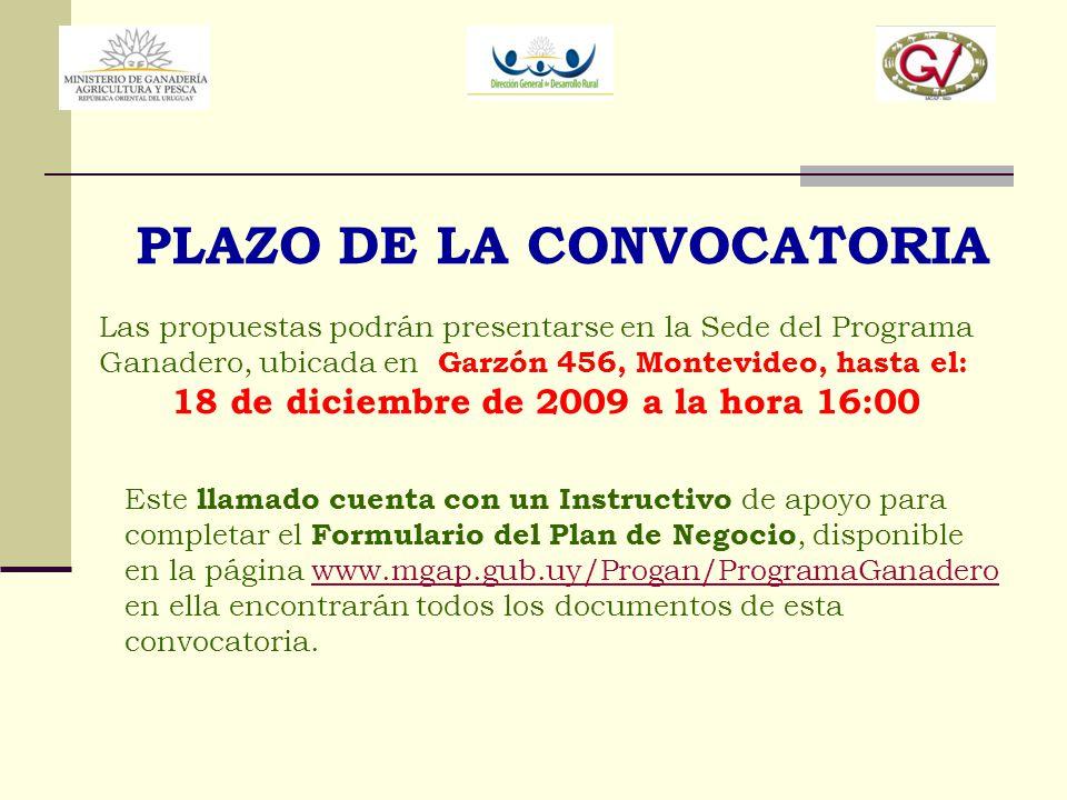 PLAZO DE LA CONVOCATORIA