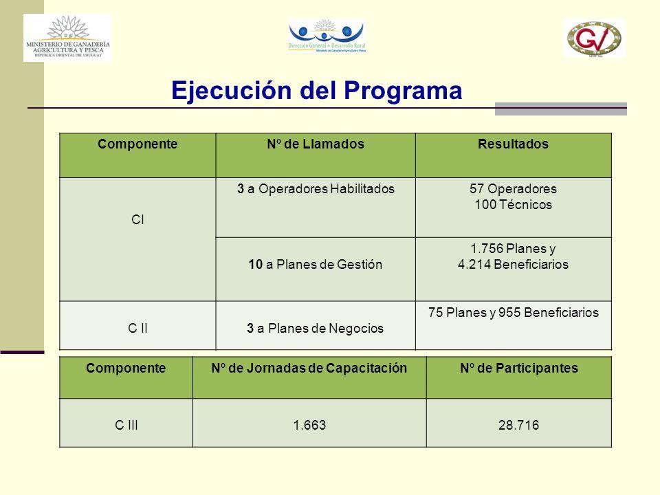 Ejecución del Programa Nº de Jornadas de Capacitación