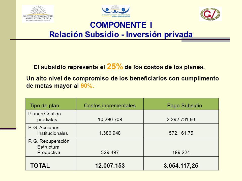 COMPONENTE I Relación Subsidio - Inversión privada
