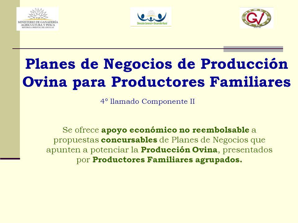 Planes de Negocios de Producción Ovina para Productores Familiares