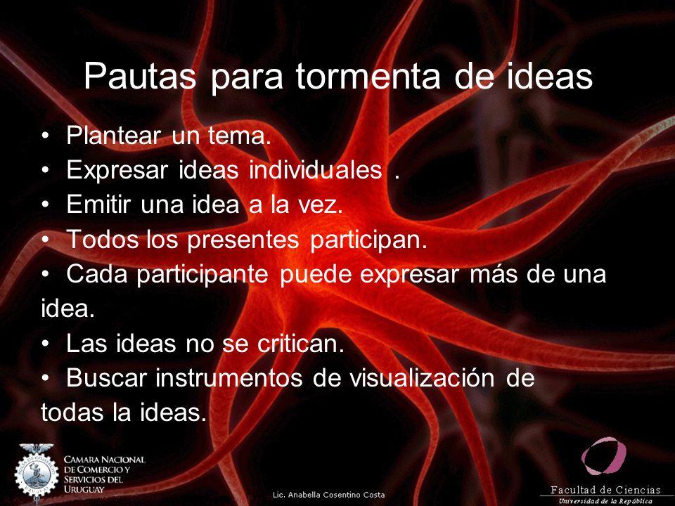 Pautas para tormenta de ideas