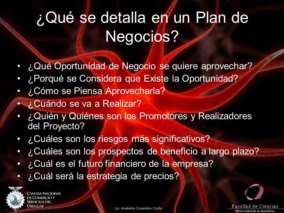 ¿Qué se detalla en un Plan de Negocios