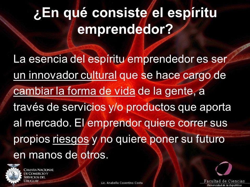¿En qué consiste el espíritu emprendedor