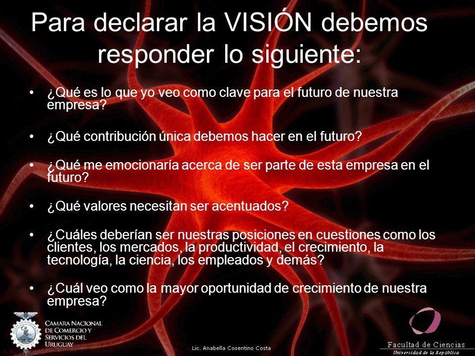 Para declarar la VISIÓN debemos responder lo siguiente:
