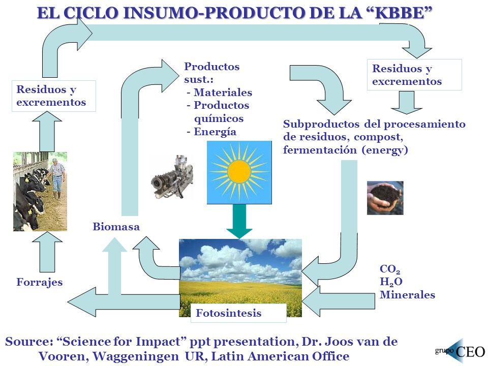 EL CICLO INSUMO-PRODUCTO DE LA KBBE