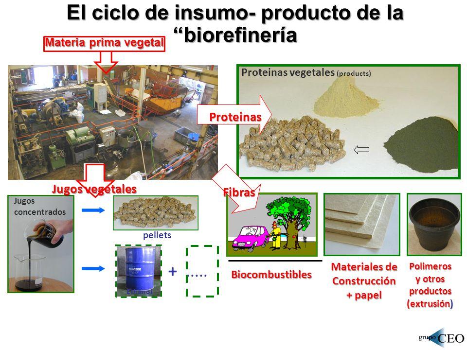 El ciclo de insumo- producto de la biorefinería
