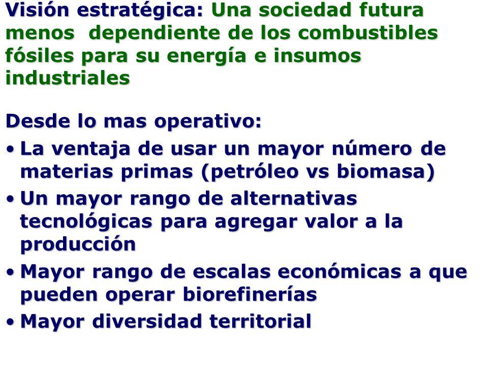 Visión estratégica: Una sociedad futura menos dependiente de los combustibles fósiles para su energía e insumos industriales