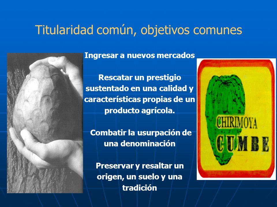 Titularidad común, objetivos comunes