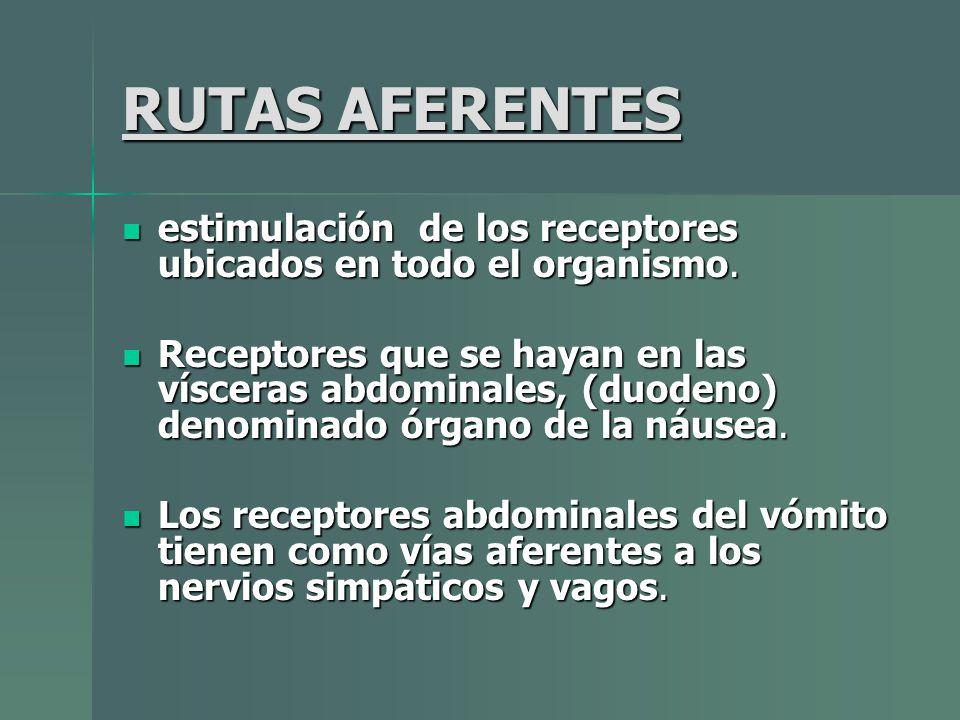RUTAS AFERENTES estimulación de los receptores ubicados en todo el organismo.