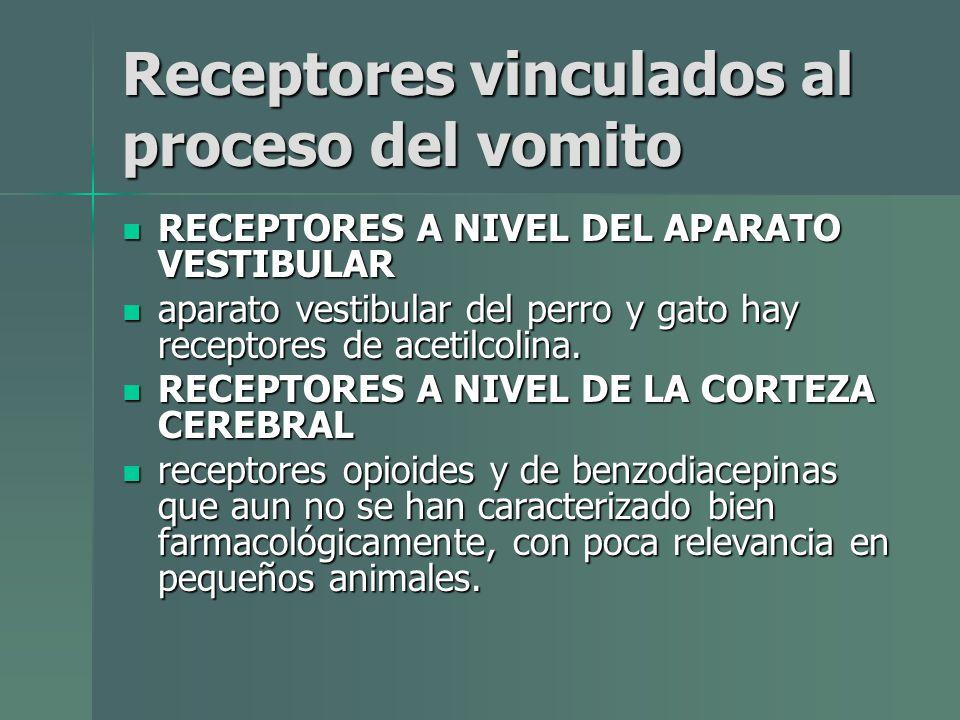 Receptores vinculados al proceso del vomito