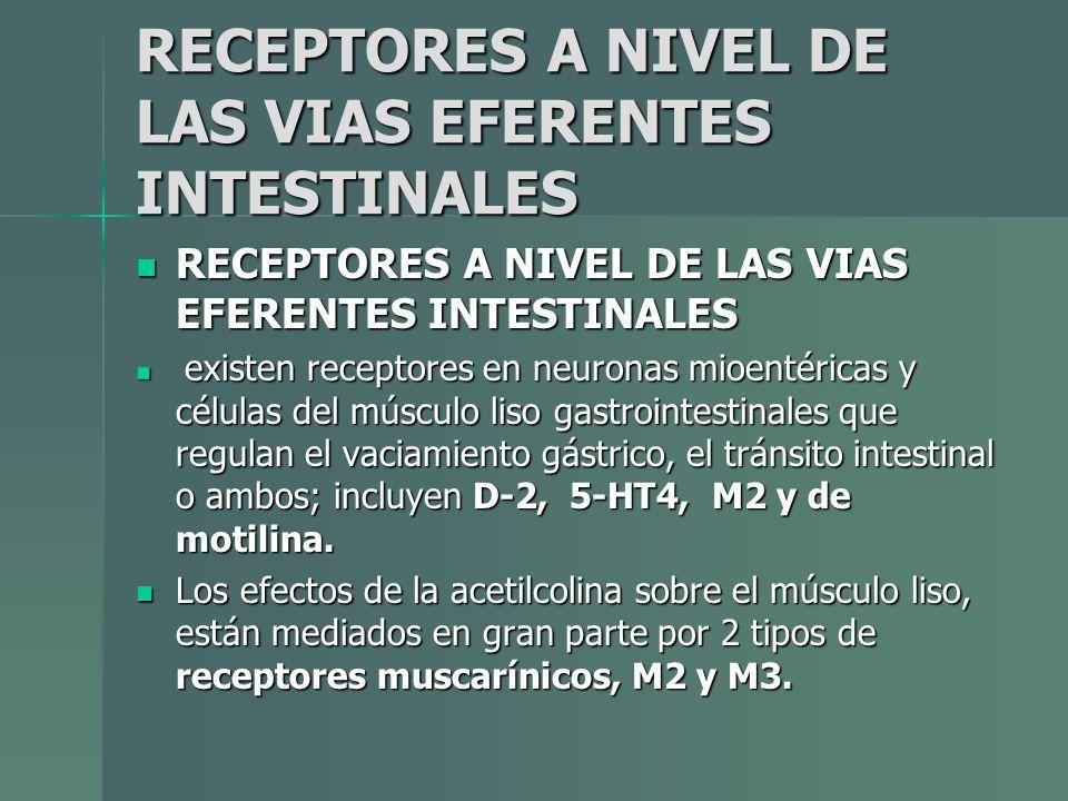 RECEPTORES A NIVEL DE LAS VIAS EFERENTES INTESTINALES