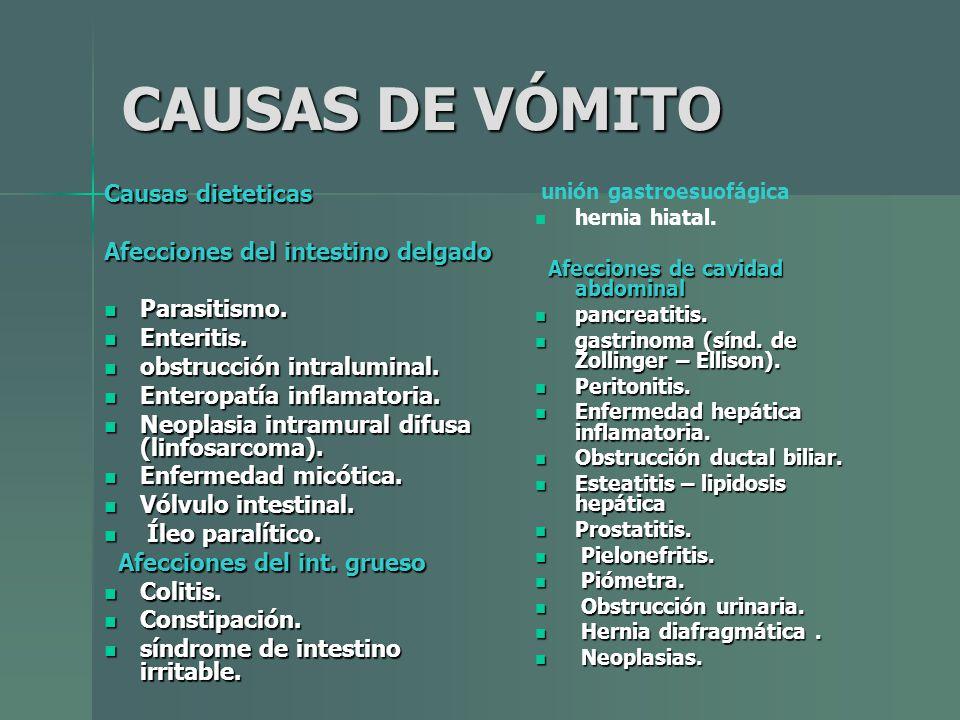 CAUSAS DE VÓMITO Causas dieteticas Afecciones del intestino delgado