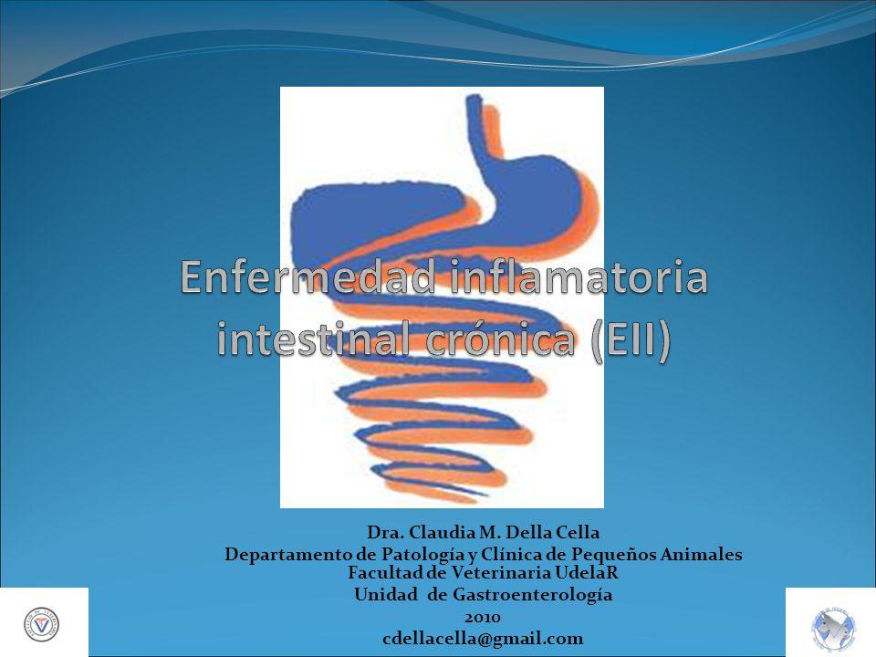 Enfermedad inflamatoria intestinal crónica (EII)